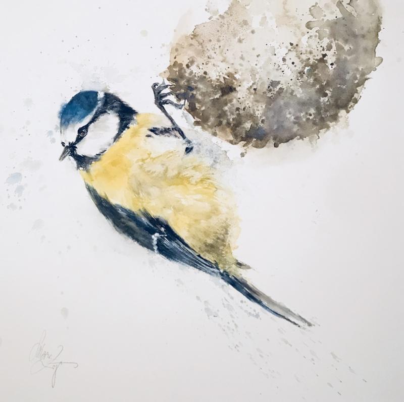 Kleine Vögel - mal ganz groß